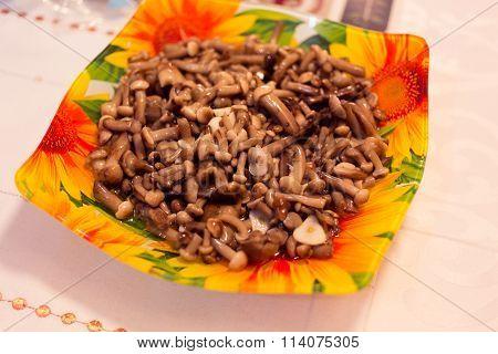 Small mushrooms honey agarics in a beautiful plate.