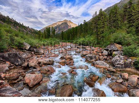 Rapid Mountain River Flows