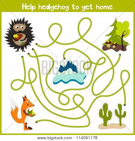 Cartoon Of Education Will Continue The Logical Way Home Of Colourful Animals.help Forest Hedgehog To
