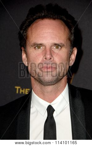 LOS ANGELES - JAN 10:  Walton Goggins at the Weinstein Company & Netflix 2016 Golden Globe After Party at the Beverly Hilton on January 10, 2016 in Beverly Hills, CA