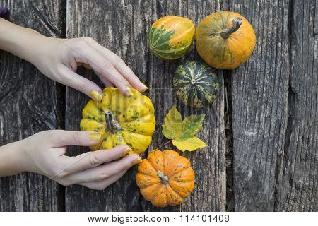 Female hands and gourds on a table