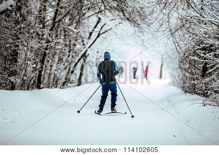 young men on skis in winter forest