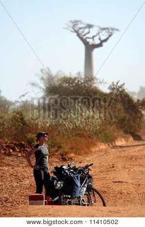 Cyclist and baobabs