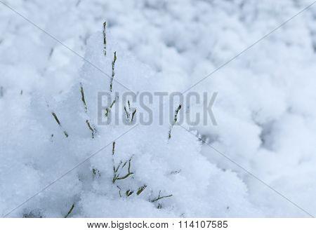 White soft winter snow
