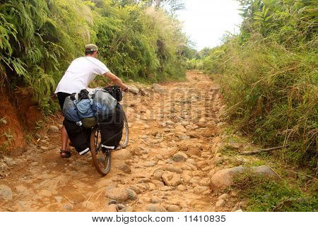 Cycling through jungle