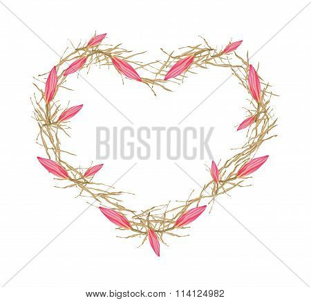 Pink Equiphyllum Flowers in A Heart Shape Frame