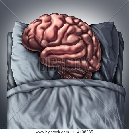 Brain Sleep