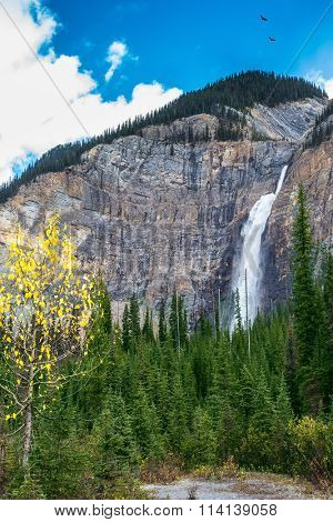The falls Takakkaw formed by thawing of glacier Daly. Autumn day in Yoho National Park in the Rocky Mountains of Canada