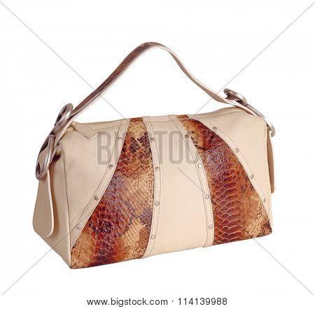 fashion bag isolated on white background