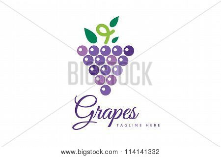 Grapes isolated logo icon
