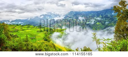 Clouds covered hilltop spread most beautiful terraces in Ha Giang
