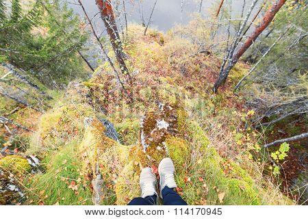 Feet sneakers walking on fall forest