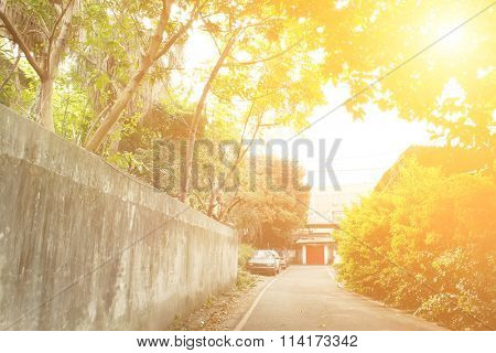 Town scenery with green trees and gray path in morning in Taiwan, Asia.