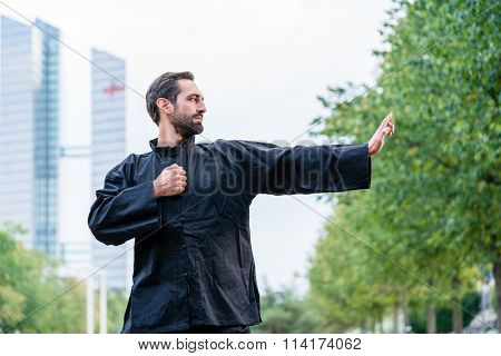 Martial arts sportsman practicing karate in city