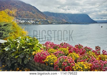 Amazing view Lake Geneva and Alps, Montereux, canton of Vaud