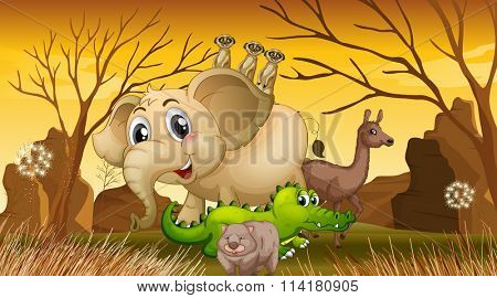Wild animals standing in the field illustration