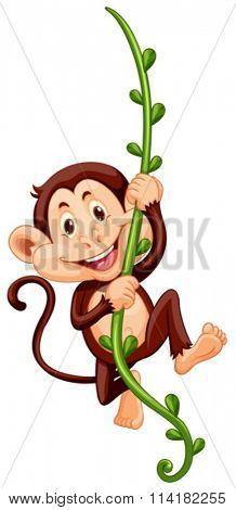 Monkey climbing up the vine illustration