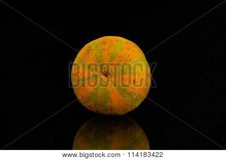 Pumpkin against a black background