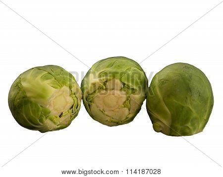 Several brussels sprouts isolated