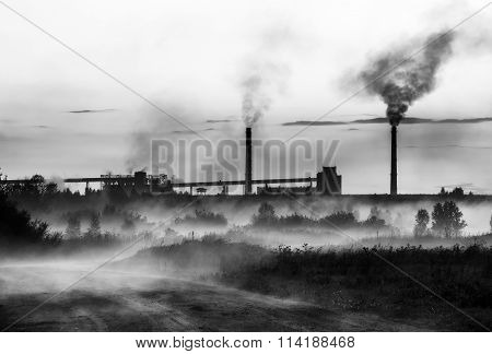 Smoke from the plant