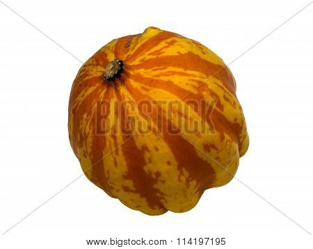 Pumpkin 1 isolated