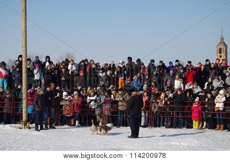 Goose Fights On Shrovetide - The Celebration And Folk Festival, Suzdal.