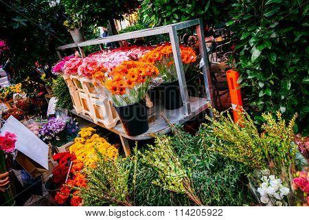 Colorful Variety Of Flowers On Flower Market In Copenhagen. Gardening, Spring, Nature Background.