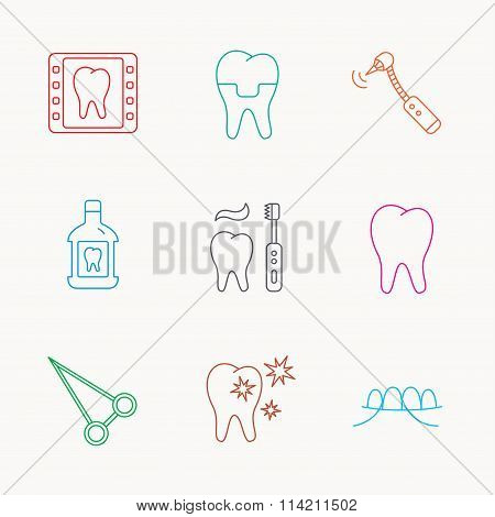 Stomatology, tooth and dental crown icons.