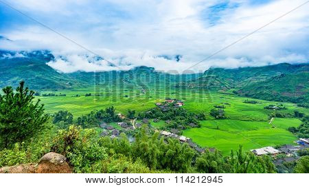 Rice terrace fields in Tu Le, North Vietnam