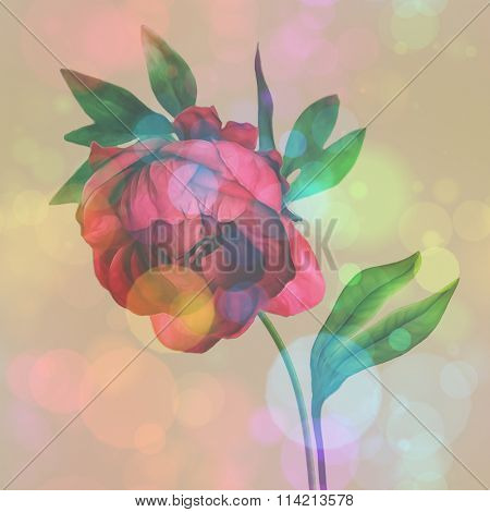 art vintage floral pattern with pink purple peony isolated on golden brown background with space for text. Bokeh effect