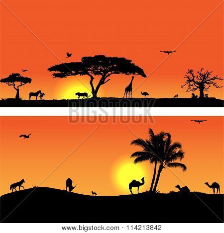 Vector banners with African fauna and flora