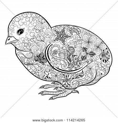Chick Doodle Illustration
