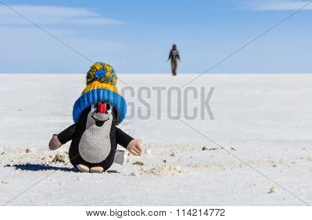 Cute Plush Toy In Salar De Uyuni, Bolivia