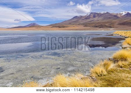 Colorful Lagoon In The High Andean Plateau, Bolivia