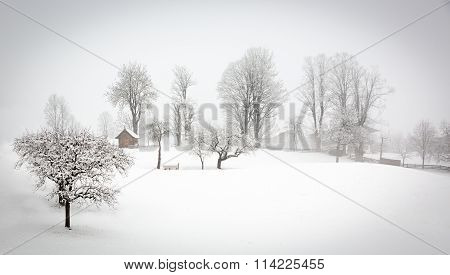 Winter Landscape In Alps, Tyrol, Wildschonau, Austria