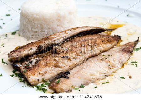 grilled salmon and rice-french cuisine dish with tomato and salmon