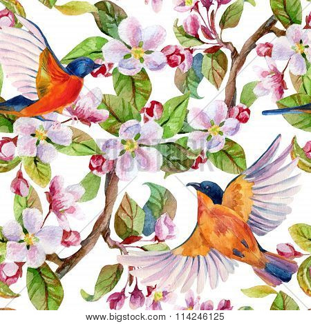 Apple Blossom And Flying Birds.