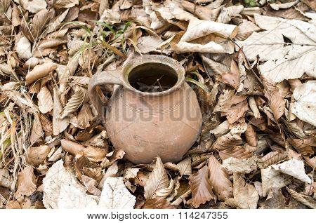 Old Broken Jar In Dry Autumn Leaves