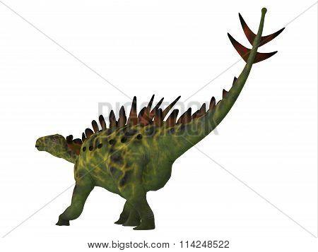 Huayangosaurus Dinosaur Tail