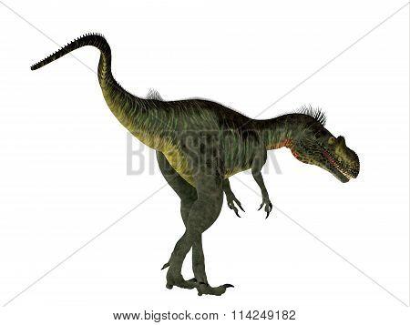 Megalosaurus Dinosaur Tail