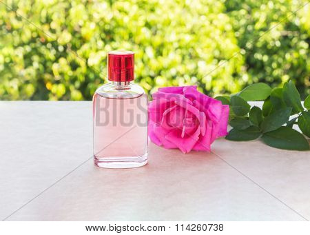 Bottle Of Sweet Pink Fragrant Perfume Decorated With Pink Rose And Nature Background