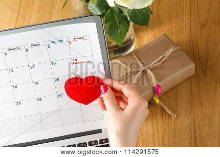 Female Mark Valentine Day Date