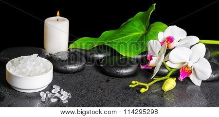 Beautiful Spa Background Of White Orchid Flower, Phalaenopsis, Green Leaf With Dew, Sea Salt And Can