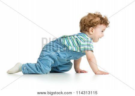 crawling baby. isolated on white background