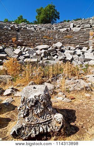 The Old  Temple And Termessos