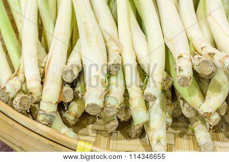 Lemon Grass Cut On Bamboo Plate