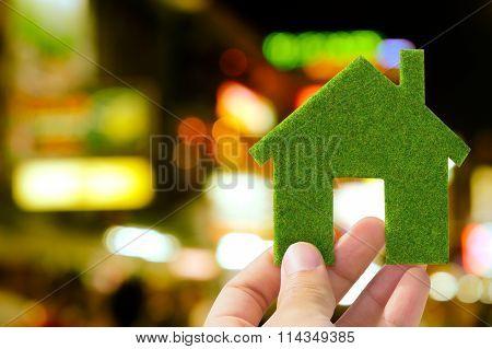 green eco house icon