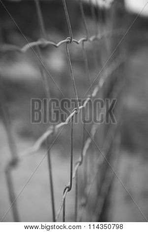 Wire Fence Abstract