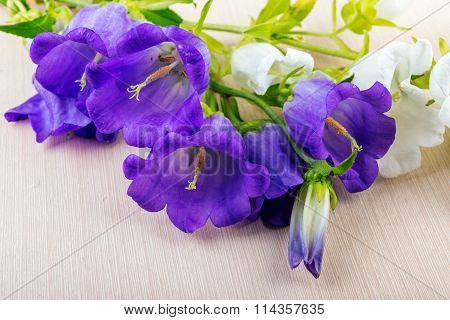 Bluebells on wooden table.