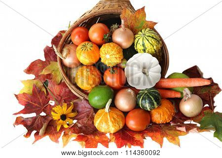 Colorful vegetable harvest with maple leaves